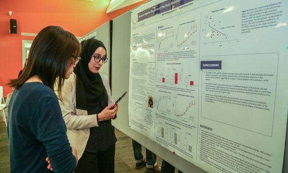 Students look at graph and talk